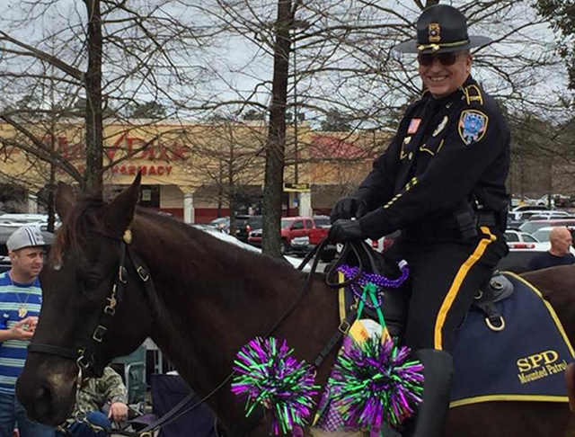 spd mounted division
